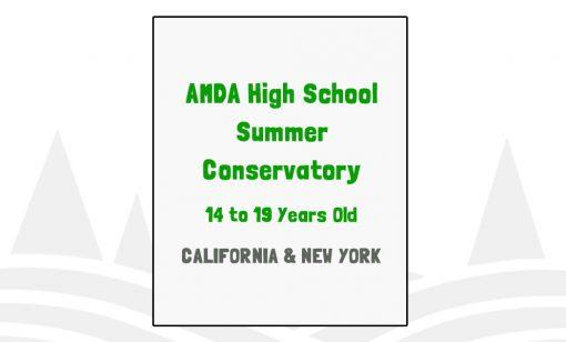 AMDA High School Summer Conservatory - CA, NY
