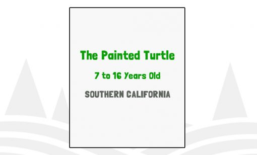 The Painted Turtle - CA