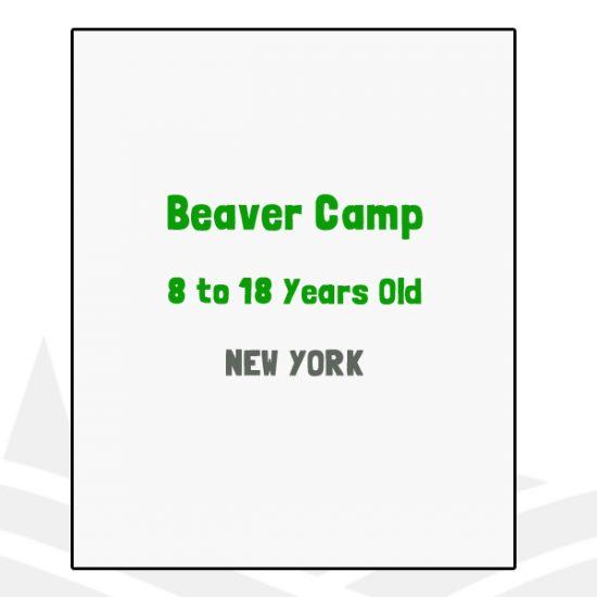 Beaver Camp - NY