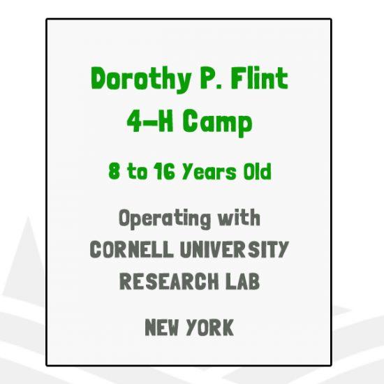 Dorothy P Flint 4-H Camp - NY