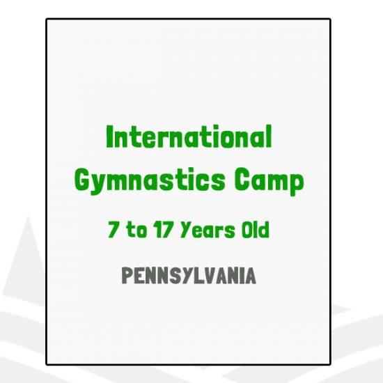International Gymnastics Camp - PA