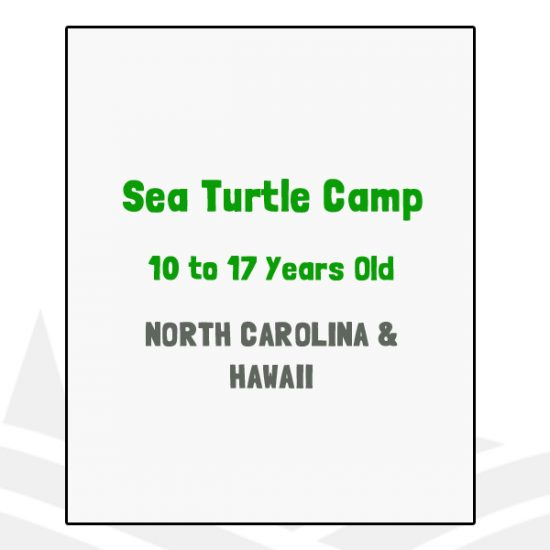 Sea Turtle Camp - NC, HI